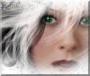 noel 1  avatar.png